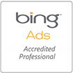 bing-adwords-services